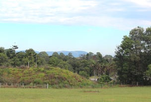 Lot 25 William Flick Lane, Ewingsdale, NSW 2481