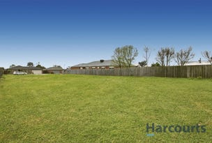 5 Ti Tree Court, Yarragon, Vic 3823