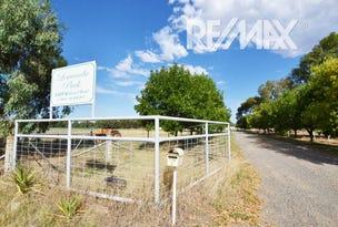 Lot 6 Vincent Road, Lake Albert, NSW 2650