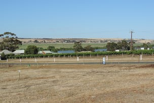 Lot 203 Hann Road, White Sands, SA 5253