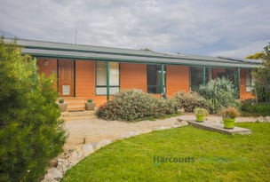 572A Chaunceys Line Road, Hartley, SA 5255