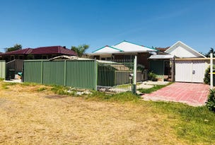 117 Saywell Road, Macquarie Fields, NSW 2564