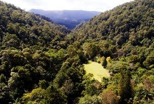 497 Mount Warning Road, Mount Warning, NSW 2484