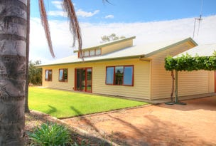 727 Hunt Road, Loveday, SA 5345