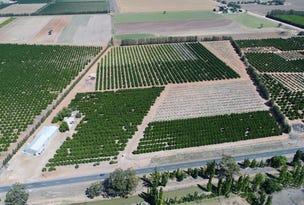 Farm 729 Whitton Road, Wamoon, NSW 2705