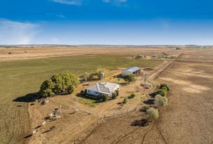 291 Back Plains Road, Back Plains, Qld 4361