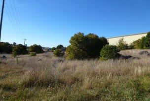 Lot 11&12 Wellington Street, Molong, NSW 2866