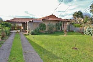 17 Burrapike Avenue, Springvale, Vic 3171