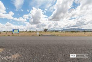 16 Rodeo Drive, Tamworth, NSW 2340