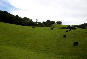 665 Whisky Creek Road, Dorrigo, NSW 2453