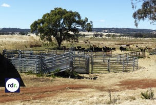 8263 Gwydir Highway, Inverell, NSW 2360