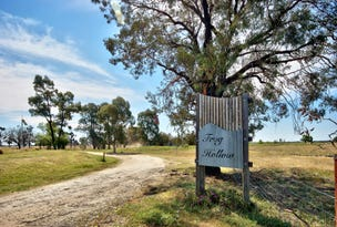 1591 Mayrung Rd, Deniliquin, NSW 2710