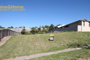 31 Newcastle Drive, Pottsville, NSW 2489
