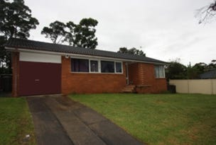4 Peggotty Ave, Ambarvale, NSW 2560