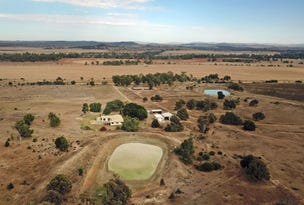 569 Tollemaches Road, Thangool, Qld 4716