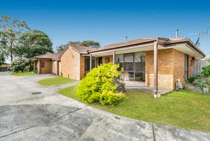 Unit 2/22-24 Denbigh Street, Frankston, Vic 3199