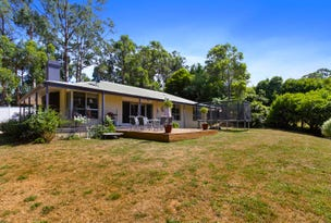 1205 Bessie Creek Road, Gembrook, Vic 3783