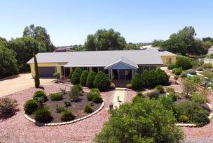 29 Fuller Road, Berri, SA 5343