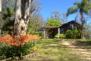 174 Frickers Road, Nymboida, NSW 2460