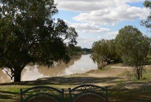 Lot 130 Polygonum Swamp Road, Bourke, NSW 2840