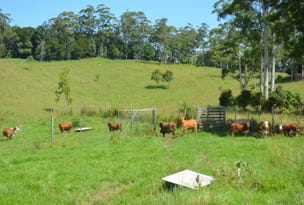 Lots 1 & 2 Willett Road Bellthorpe Sunshine Coast via, Maleny, Qld 4552