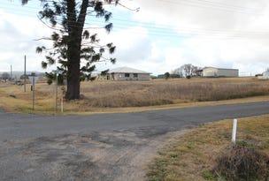 164 Cowper Street, Tenterfield, NSW 2372