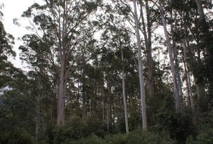 Lot 0 Highland Lakes Road, Golden Valley, Tas 7304