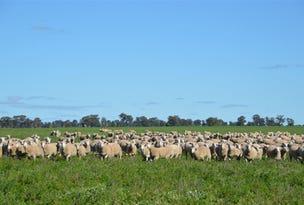 Thornleigh 1631 Faithfull Road, Sandigo via, Narrandera, NSW 2700