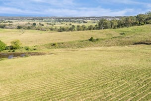 Lot 205 Esk Circuit, Maitland Vale, NSW 2320