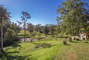 100 Wilman Road, Round Mountain, NSW 2484