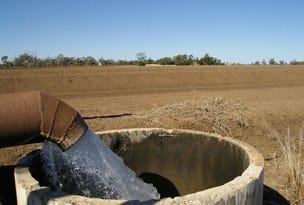 . 49ML Lower Namoi Ground Water Licence, Narrabri, NSW 2390