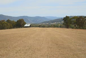 287b Mount Spirabo Road, Tenterfield, NSW 2372