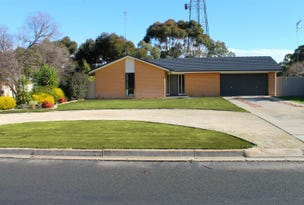 95 Park Terrace, Bordertown, SA 5268