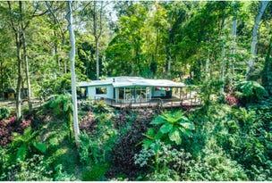 469 Kalang Road, Bellingen, NSW 2454
