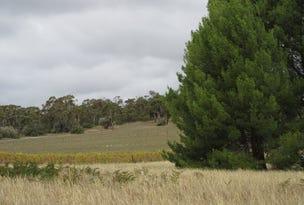 57 Douglas Gully Road, McLaren Flat, SA 5171
