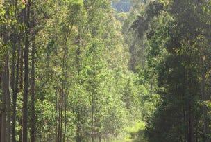 873 Ewingar Road, Ewingar, NSW 2469