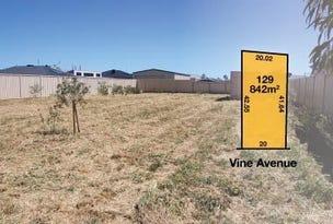 42 Vine Avenue, Horsham, Vic 3400