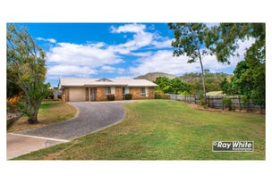 17 Milford Avenue, Frenchville, Qld 4701