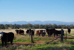 791 Mayfield Road, Baan Baa, NSW 2390