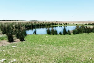 Lot 10965 Winchester South Rd, Coorow, WA 6515