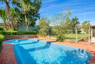 23 Traminer Place, Eschol Park, NSW 2558