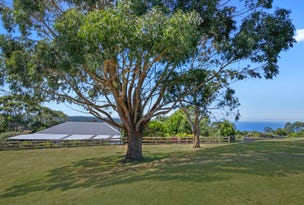 5835 Great Ocean Road, Yuulong, Vic 3237