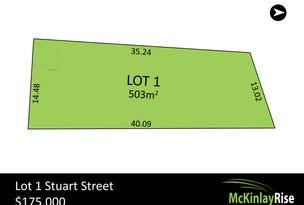 Lot 1 Stuart Street, Hewett, SA 5118
