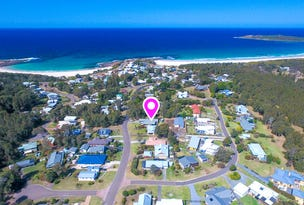 142 Malibu Drive, Bawley Point, NSW 2539