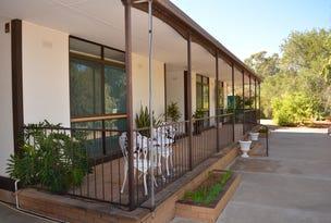 71 Pamamaroo Road, Menindee, NSW 2879