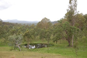 Lot 74, 339 Peckhams Road, Tabulam, NSW 2469