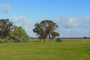 357 Moulyerup Road, Broomehill East, WA 6318