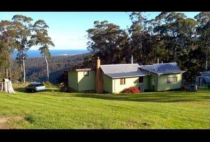 1184 Elephant Pass Road, St Marys, Tas 7215