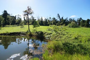 L17 Tully Gorge Road, Tully, Qld 4854