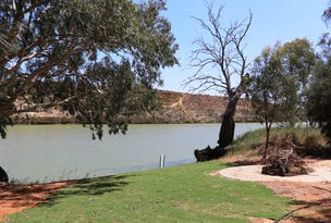 Lot 257 Old Cadell Road, Morgan, SA 5320